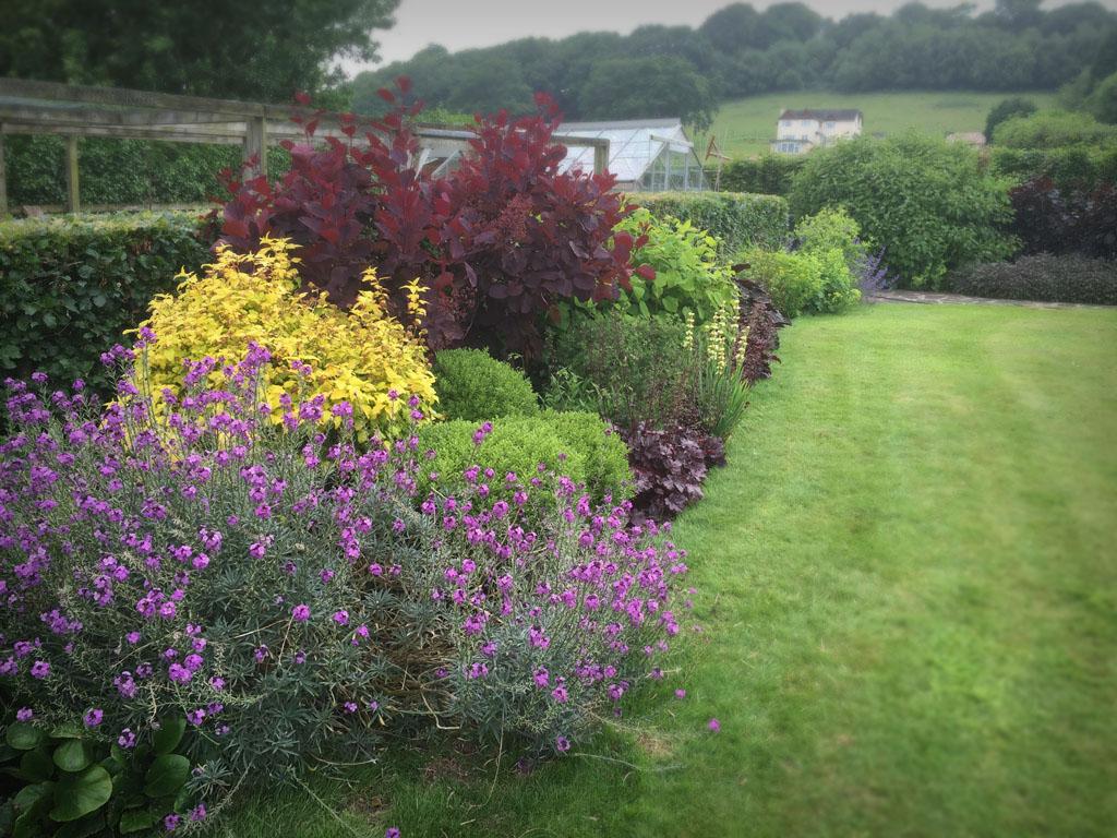 Woolaston herbacious borders garden maintenance gravel for Shrubs for garden borders