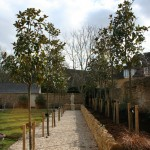 Green Man Gardens Landscape Gardening screening