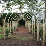 Green Man Gardens Landscape Gardening screening pergola trellis