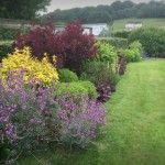 Woolaston Herbacious Borders Garden Maintenance Gravel Path Brick Edge Shrubs